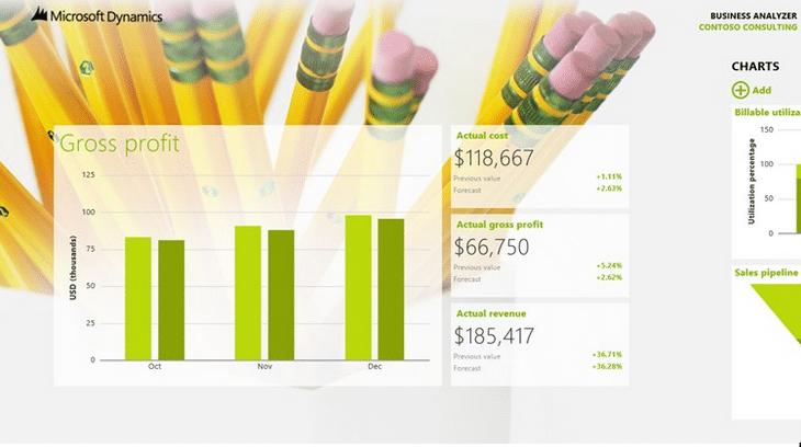 Microsoft Dynamics GP Business Analyzer Screenshot